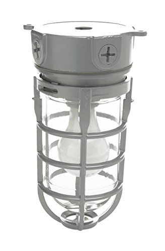 Woods Vandal Resistant Security Light With Ceiling Mount (150W Incandescent Bulb, Silver)