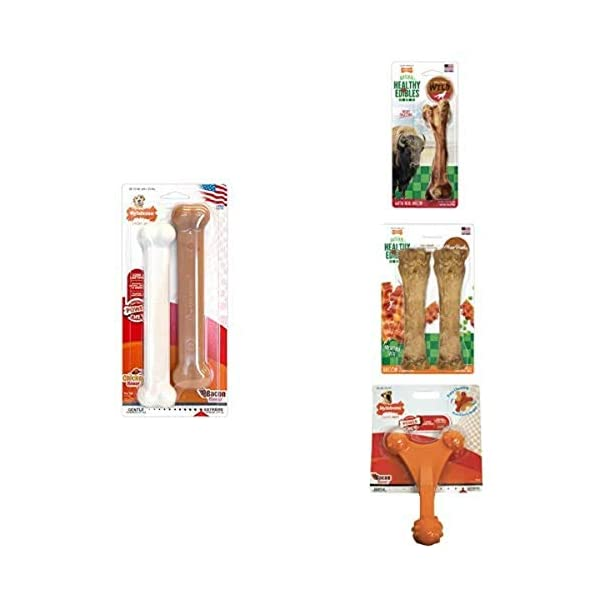 Nylabone Twin Pack Power Chew Flavored Durable Dog Chew Toys