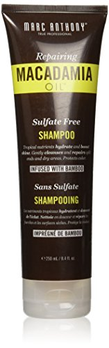 Marc Anthony Macadamia Champú hidratante al aceite, 8.4 onzas, sin sulfatos, para cabello seco o con exceso de trabajo