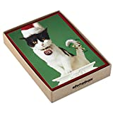 Hallmark Shoebox Funny Boxed Christmas Cards, Cat with Jingle Bells (16 Cards and 17 Envelopes)