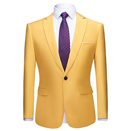 Mr.BaoLong&Miss.GO Autumn and Winter Mens Suit Jacket Mens Business Suit Mens Suit Jacket Best Man Single Suit