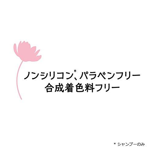 ユニリーバ・ジャパン『LUXプレミアムボタニフィークダメージリペア』