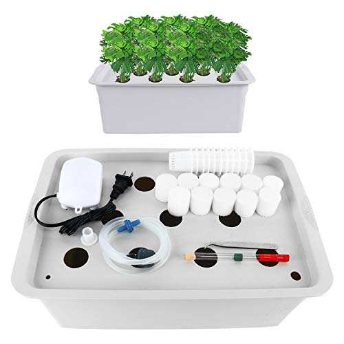 Homend Indoor Hydroponic Grow Kit with Bubble Stone, 11 Plant Sites (Holes) Bucket, Air Pump,...