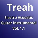 Electro Acoustic Guitar Instrumental, Vol. 1.1