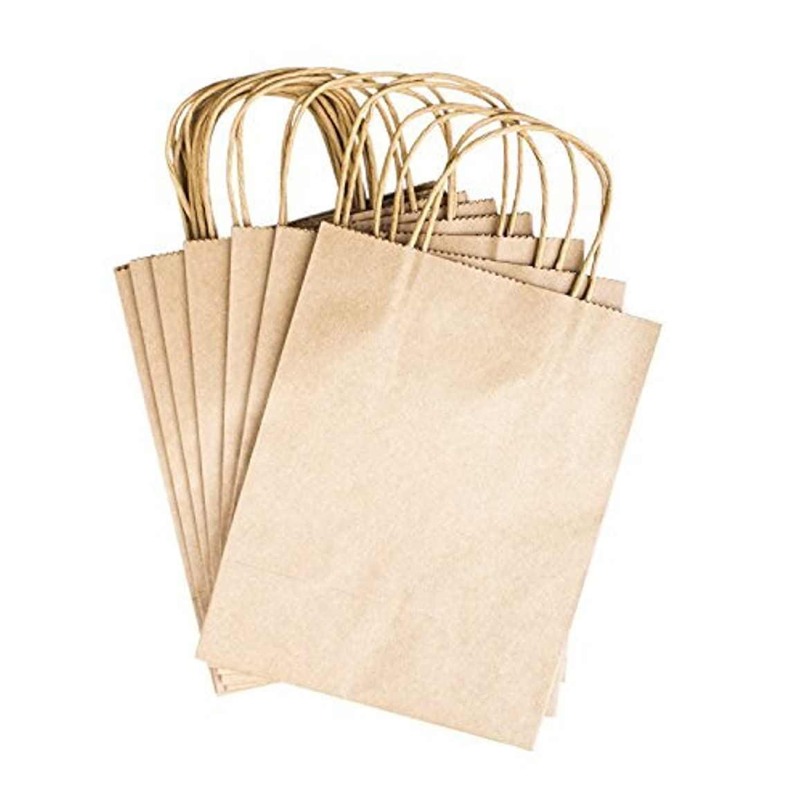 Paper Gift Bags with Handles 8