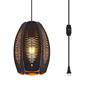 YLONG-ZS Farmhouse Hanging Lights Fixtures with 16.4 FT Plug in Cord Black and Gold Metal Pendant Light Cage in-Line On/Off Dimmer Switch Rustic Swag Ceiling Lamps for Kitchen Island Bedroom Hallway