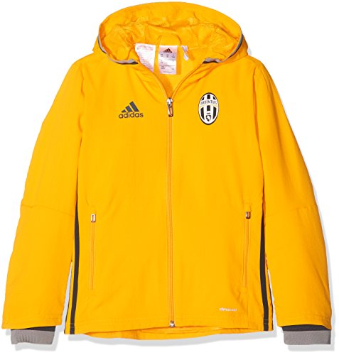 adidas Kinder Juventus Turin Präsentationsjacke Trainingsjacke, Collegiate Gold/Dark Grey/Ch Solid Grey, 128