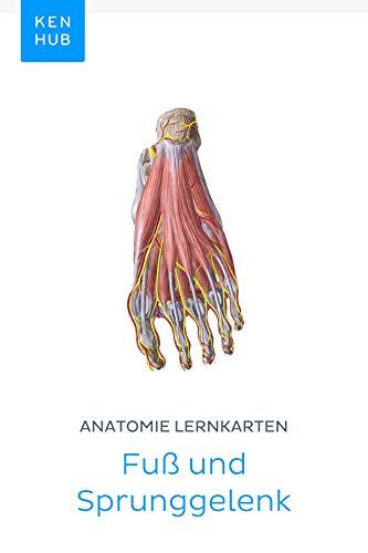 Anatomie Lernkarten: Fuß und Sprunggelenk: Lerne alle Knochen, Ligamente und Muskeln unterwegs (Kenhub Lernkarten 32)