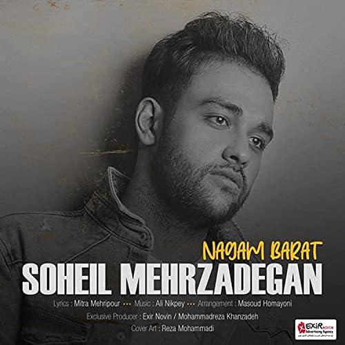 Soheil Mehrzadegan