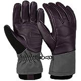 VBIGER Motorradhandschuhe Winter Handschuhe Leder Skihandschuhe wasserdichte Warme Handschuhe für...
