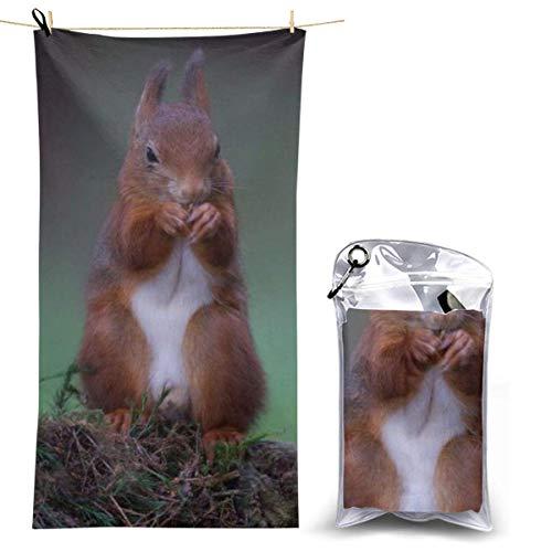 beibao Toallas de baño Pureny Stones Moss Squirrel Red Food Toalla de Camping de Secado rápido Toalla de Playa compacta de Alta absorción para Gimnasio Mochilero Senderismo 70x130cm