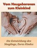 Vom Neugeborenen zum Kleinkind: Die Entwicklung des Säuglings, Eures Kindes