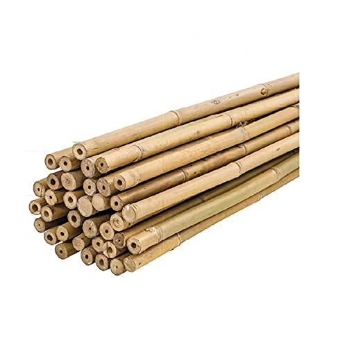 PLANTAWA Tutores de Bambú, Tutores de Bambú Ø 6-8 mm, Paquete 25 Unidades, Uso Agrícola para Sujetar Plantas, Hortalizas y Árboles (180cm)