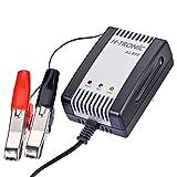 H-Tronic Cargador de batería de plomo AL800, 6 V, 12 V, corriente de carga (máx.) 0,8 A