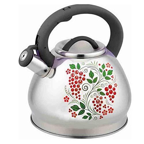 FABAX Tetera Caldera de té, Tetera, Cocina de inducción, Cocina de Gas, 3.0L Forma de Manzana camaleón 304 Caldera de Acero Inoxidable Silbato de Plata Teteras (Color : A, tamaño : 3l)