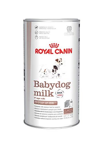 leche para cachorros de un mes fabricante Royal CANIN