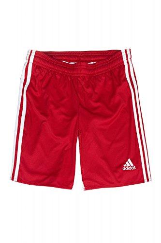 adidas Regi 14SHO WB - Pantaloncini da Uomo, Uomo, Rosso/Bianco, 152
