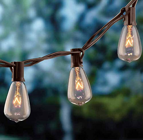 hairmiss 25ft Outdoor Edison Bulb String Lights ST35 Edison Bulbs(Plus 2 Extra Bulbs), UL Listed for Indoor/Outdoor Decor, Perfect for Garden/Backyard/Pergola/Patio/Party (Brown)