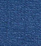 Marine Outdoor Pontoon Boat Carpet/20oz/10colors (Marine, 8-1/2'x20)