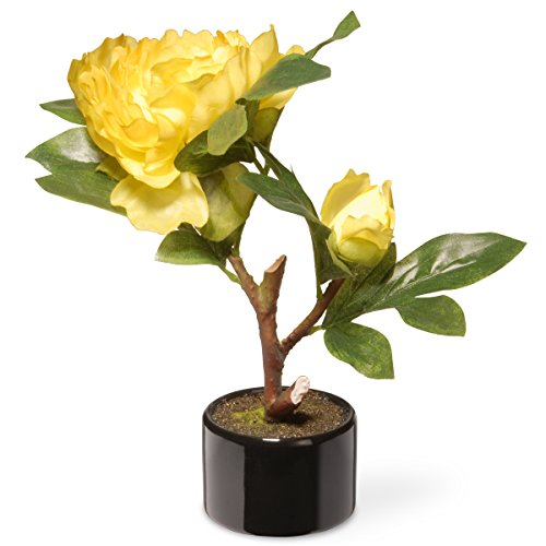 National Tree Company Artificial Flowers | Includes Ceramic Pot Base | Yellow Peony, 9.5 Inc