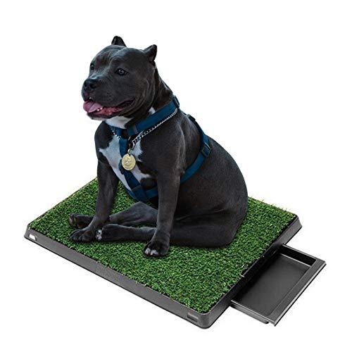 Hundetoilette Welpentoilette Hundeklo mit Kunstrasen Trainingsunterlage 63x50cm Trainingsmatte für kleine ältere Hunde Indoor Hundetöpfchen, Hunde Training Rasenmatte für Kleine Grosse Hunde ältere