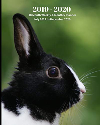 2019 - 2020 | 18 Month Weekly & Monthly Planner July 2019 to December 2020: Black and White Bunny Animal Nature Vol 20  Monthly Calendar with U.S./UK/ ... Holidays– Calendar in Review/Notes 8 x 10 in.