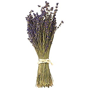 WGIA Natural Dried Lavender Bundles – Freshly Harvested Lavender Bunch Royal Velvet Decorative Flowers Bouquet for Wedding DIY Home Party & Valentine's Day Gifts – 1 Bundle Pack