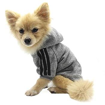 Vêtements pour Animaux, Chien Chat à Capuche vêtements Chiot Pull Chaud à Capuche Chaud QiCheng & LYS (Gris, M)