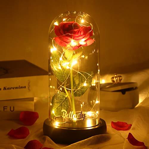 Kit de Rosas la Bella y la Bestia Rosa Romántica, Rosa de Seda Roja Elegante en Cúpula de Cristal con Base Pino Luces LED, Mejor Regalos para Día de San Valentín Aniversario Bodas Navidad Cumpleaños