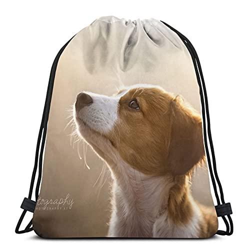 Mochila unisex con cordón, con aspecto de perro, bolsa de cincha de poliéster, impermeable, para deporte, gimnasio, mochila informal para mujer