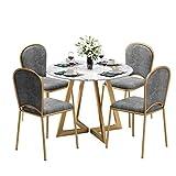 WQQDDP Chaises Manger 5 pièces, chaise de salle à manger chair chaise d'hôtel Set...