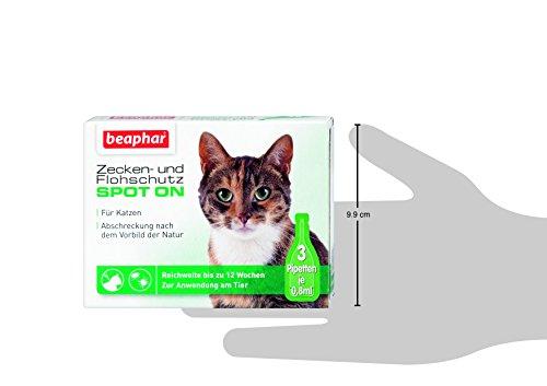 Beaphar Zecken- und Flohschutz Spot-On 3 x 0.8 ml - 3