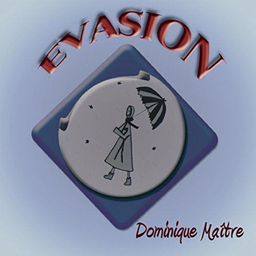 Dominique Maitre