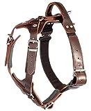 DINGO GEAR Elite - Arnés para Perro (Hecho a Mano), Color marrón Oscuro