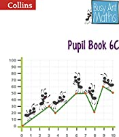 Busy Ant Maths -- Pupil Book 6c