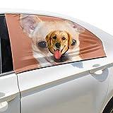 Plsdx Nette Chihuahua Hund Tier Haustier Hund Sicherheit Autoteil Fahrzeug Auto Fenster Zaun Vorhang Barrieren Protector Für Baby Kind Sonnenschutz Abdeckung Universal Fit SUV