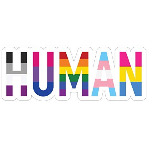 Sticker Sensation Human LGBT+ Gay Pride Sticker - Rainbow Lesbian Bisexual Pansexual Transgender Flag Vinyl Decal Sticker - Car/Truck Bumper Sticker Laptop Decal (6' x 2.25')