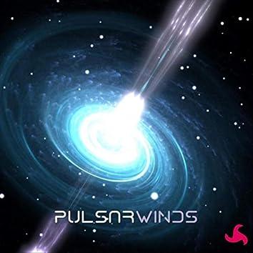 Pulsar Winds