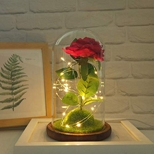 FENGLI Flower Micro Landscape Gifts for Her Glass Dome Enchanted Flowers LED Valentine's Gift for her Home Decor Love House Home Party Decor Anniversary