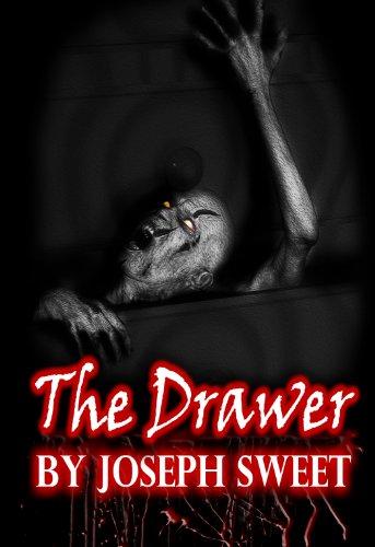 The Drawer (English Edition)