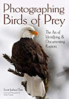 Photographing Birds of Prey: The Art of Identifying & Documenting Raptors