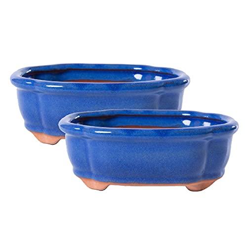 Jinfa | Set de 2 Macetas en cerámica esmaltada para bonsái en Forma Ovalada con Agujeros de Drenaje y 2 Mallas de Drenaje | Color Azul | 15 x 11,5 x 5,5 cm