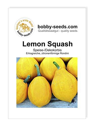 Lemon Squash Kürbissamen von Bobby-Seeds, Portion