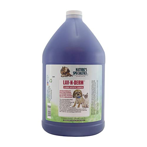 Nature's Specialties Lav-N-Derm Shampoo for Dogs Cats, Non-Toxic Biodegradeable, 1gal
