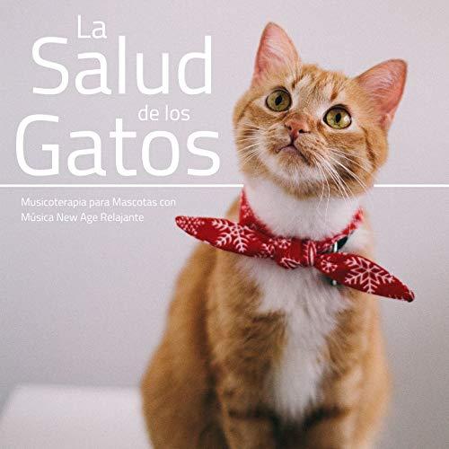 La Salud de los Gatos: Musicoterapia para Mascotas con Música New Age Relajante