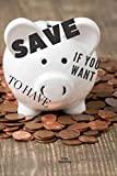 save to have: Motivational Notebook, Journal, Diary, money, cost savings (111 Pages, Lined, 6 x 9)