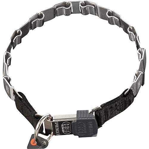 Sprenger Hundehalsband Neck-Tech Fun mit ClicLock Verschluss I Hundehalskette aus rostfreiem Edelstahl, Flache austauschbare Gliederkette, 48cm