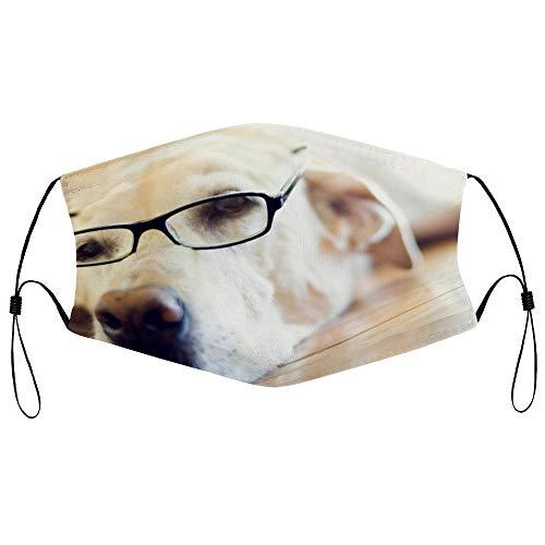 Dkisee Fashion Unisex Staubmaske mit Filterelement, verstellbare Ohrschlaufen, Gesichtsmaske, Outdoor-Schutzmaske (Labrador Retriever, Hundebrille, lustig)