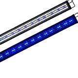 Boomersun Iluminación LED clásica para acuario, luz LED con luz de luna, lámpara universal para acuarios de agua dulce.