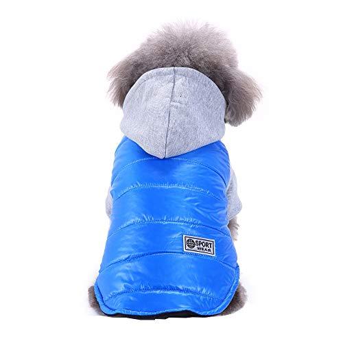 Amphia - Hund Sportjacke Jacke,Haustier-Hundekatze-Winterjacke kleidet Welpen-Mantel-Kleidungs-Kleidung(Himmelblau,S)
